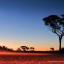 western_australia___1920x1080_by_amorphousbeing-d3ch185
